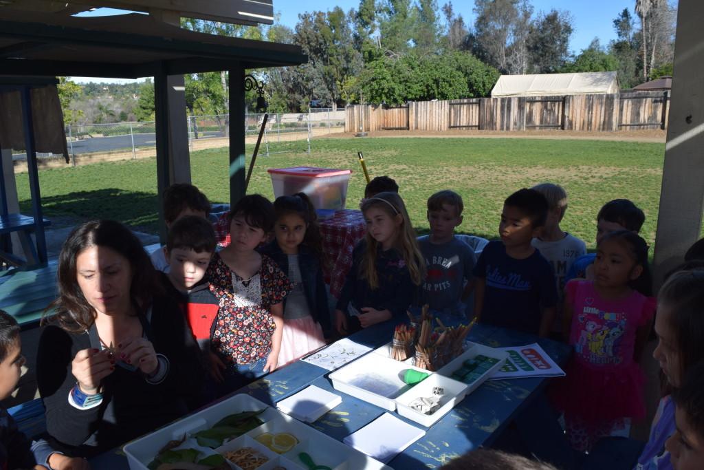Children's Sensory Drawing Lesson - Leaf & Nature, art teacher spramani elaun