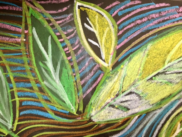 Kids Art Project | Rainforest | Oil Pastels, teacher lesson drawing